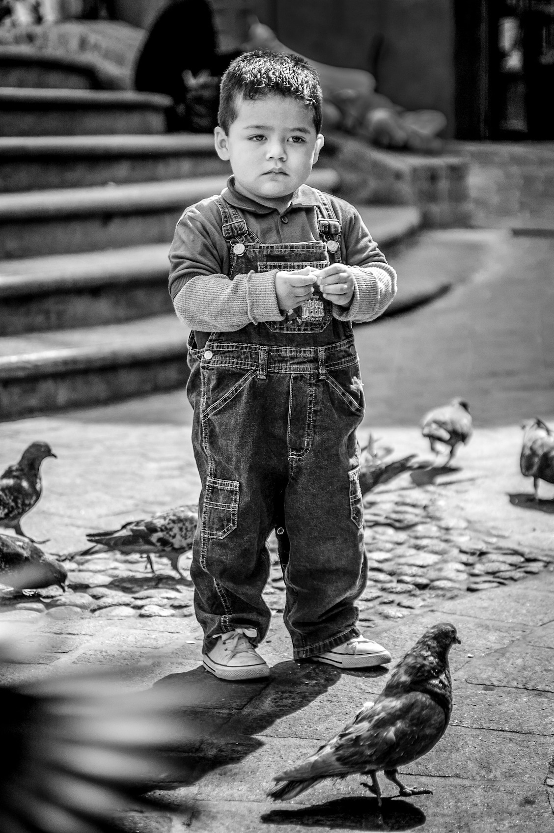 A boy with pigeons at Plaza De Los Angeles in Guanajuato, Mexico. A selection from the Common Ground Project.